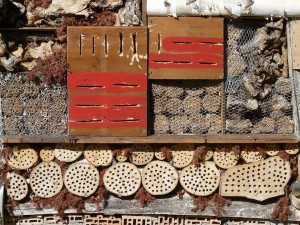 insect-hotel-59963_960_720