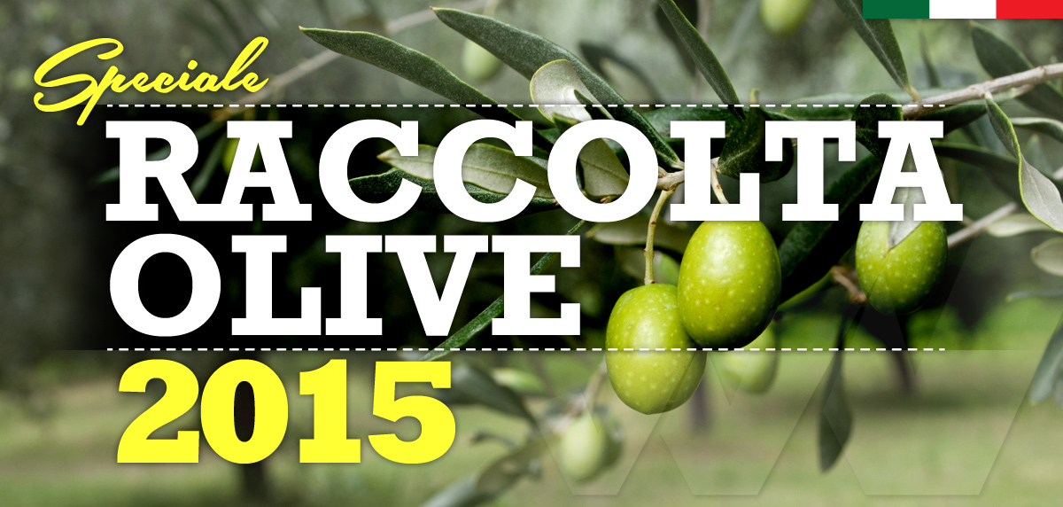 Speciale_Raccolta_Olive_2015